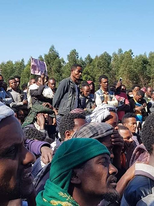 What is the point in Amhara nationalism? - Ethiopia Insight